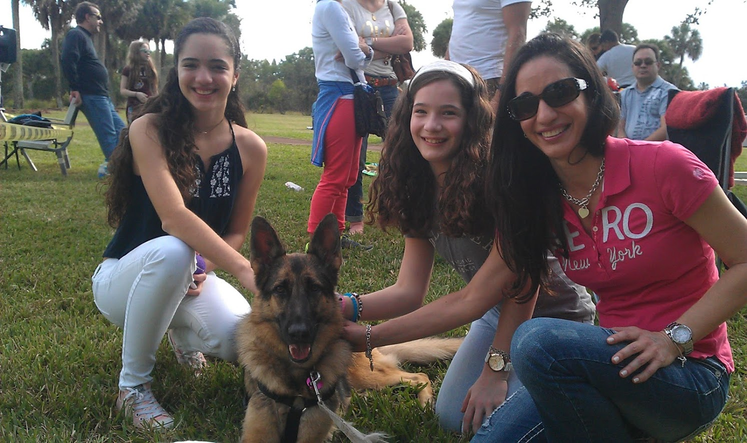 Pet And Therapy Dog Training For Margate Florida By Tom Savoca