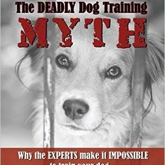 Crating Your Puppy - Dog Training Does Matter | South Florida
